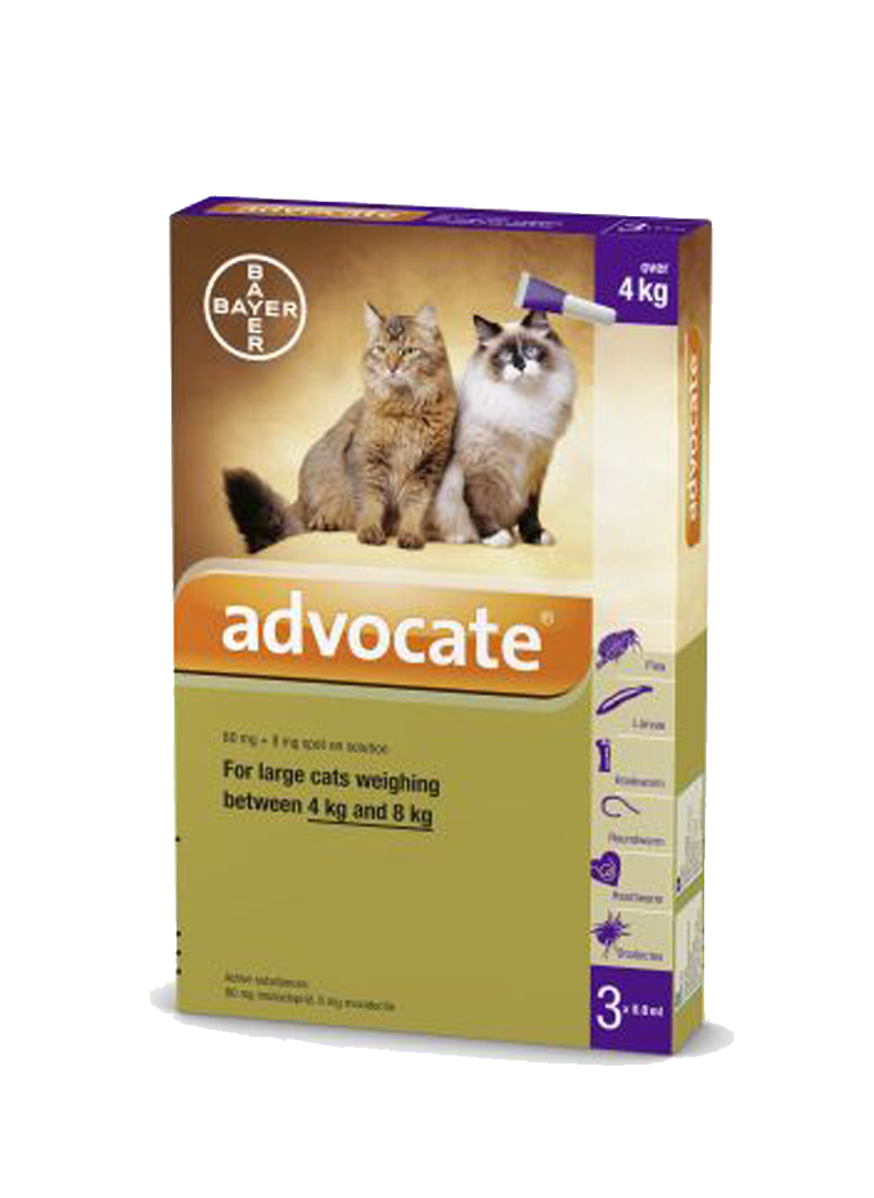 Advocate for Cats 4-8kg / Large (Prescription Needed)