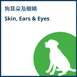Skin, Ears and Eyes