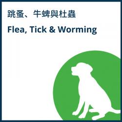 Dog Flea, Tick and Worming