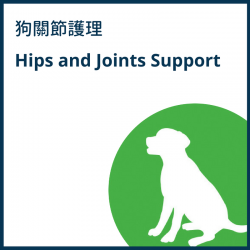 Hips and Joints Support