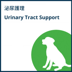Urinary Tract Support